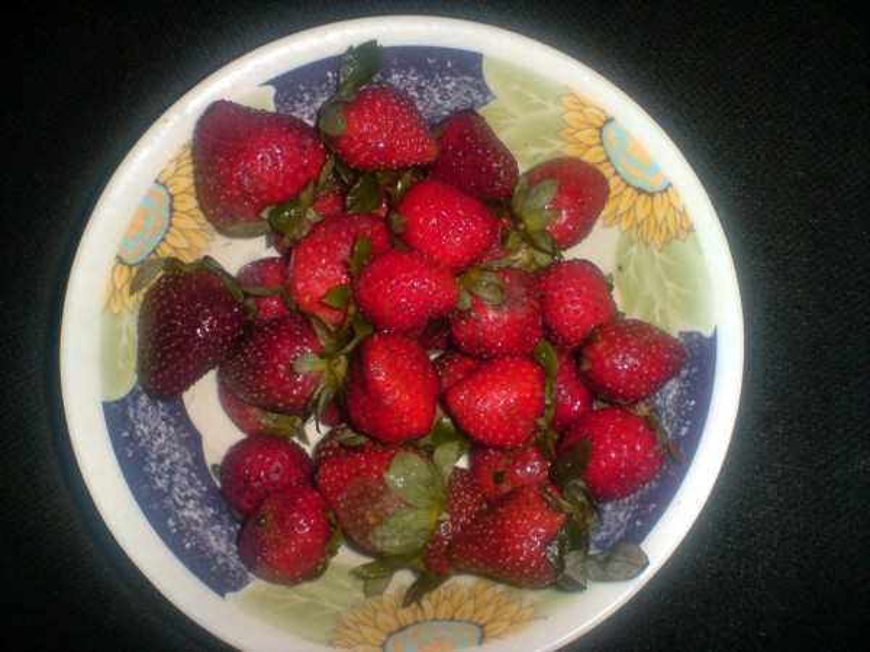 berries-red